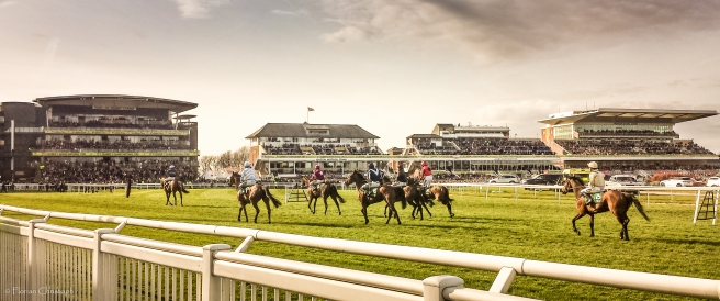 Aintree racecourse_Grand National_equestrian architecture_ Claudia Satrústegui